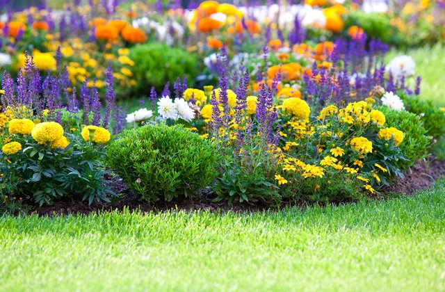 Garden Care and Planting